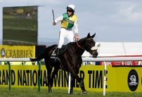 Many Clouds passes away