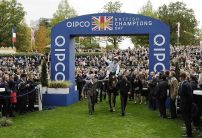 QIPCO Champions Day Trends