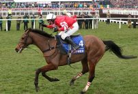 Coneygree ruled out of Gold Cup
