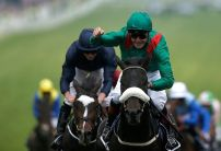 Harzand among 19 confirmations for Sunday's Arc