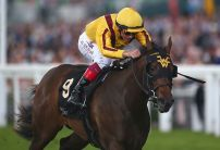 'Once in a lifetime fillies' set to clash in Cheveley Park