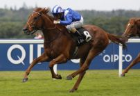 Get the low-down on Qipco British Champions Day at Ascot