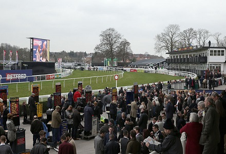 Tim Vaughan horses heavily backed at Uttoxeter