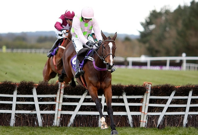 Five Horses for the Weekend from Oddschecker