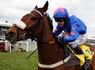 Tizzard trump Card the unlikely hero
