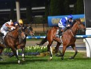 Beaudesert (Tuesday) Betting Tips & Preview