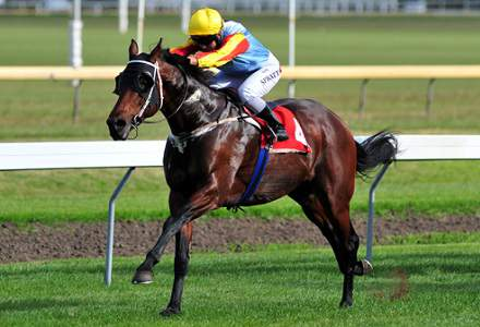 Gilmore - Moonee Valley and Warwick Farm Tips