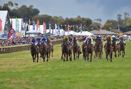 Balaklava Betting Preview | Horse Racing Tips