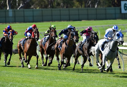 Gilmore - Sale and Gosford Tips
