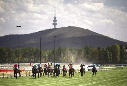 Betting Tips: CANBERRA