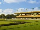 Canterbury Park Betting Preview | Horse Racing Tips