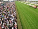 Horse Racing News | 2017 Blue Diamond Field takes shape