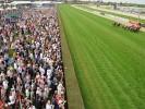 Horse Racing News   Caulfield Saturday 25-02-2017 Horses to Follow