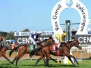 Geelong Betting Preview | Horse Racing Tips