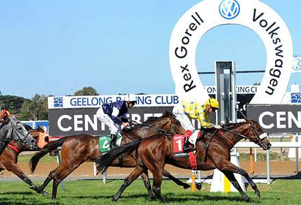 Geelong Betting Tips & Preview