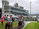 Launceston Betting Preview | Horse Racing Tips