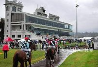 Launceston Betting Tips & Preview