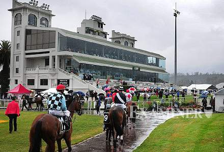 Betting Tips: LAUNCESTON