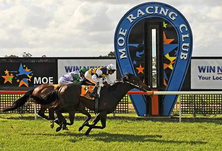 Moe Betting Preview | Horse Racing Tips