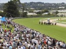 Mornington Betting Tips & Preview