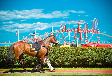Betting Tips: MORPHETVILLE
