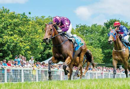 Mount Gambier Betting Preview | Horse Racing Tips