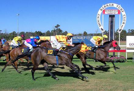 Mount Barker Betting Preview | Horse Racing Tips