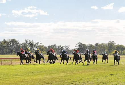 Mudgee Betting Preview | Horse Racing Tips