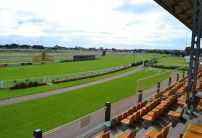 Newcastle Betting Preview | Horse Racing Tips