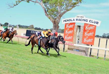 Penola Betting Tips & Preview