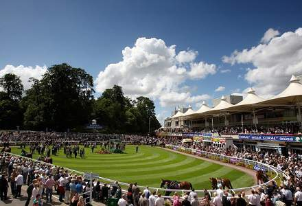 Sandown Betting Preview   Horse Racing Tips