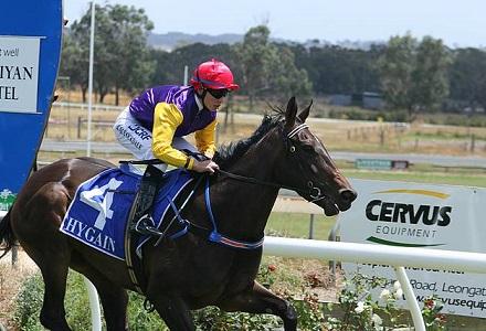 Gilmore - Geelong and Goulburn Betting Tips