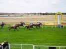 Strathalbyn Betting Preview | Horse Racing Tips