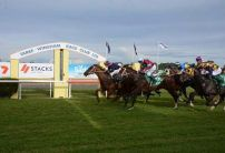 Taree (Sunday) Betting Tips & Preview