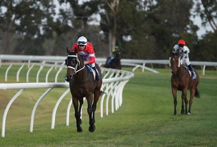 Betting Tips: STAWELL
