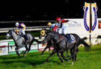 Toowoomba  Betting Preview | Horse Racing Tips