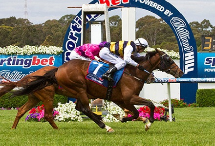 William Hill Park, Warwick Farm and Ipswich Tips