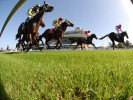 Wyong Betting Preview | Horse Racing Tips