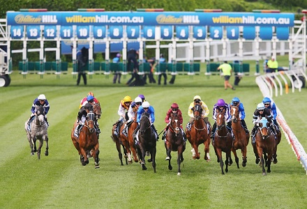 Betting Tips: MUSWELLBROOK