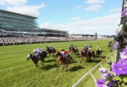 Find out how to win ten times more on the Melbourne Cup