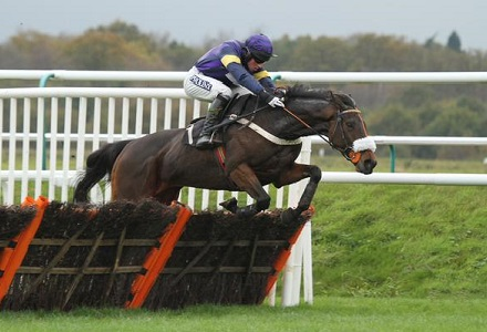 High hopes for Bob at Haydock on Saturday