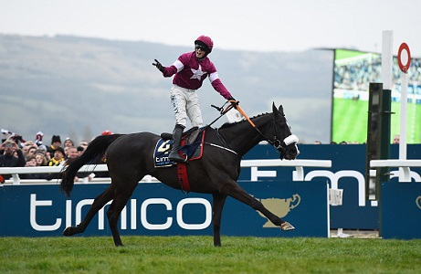 Cheltenham Festival: Returning Heroes from 2016