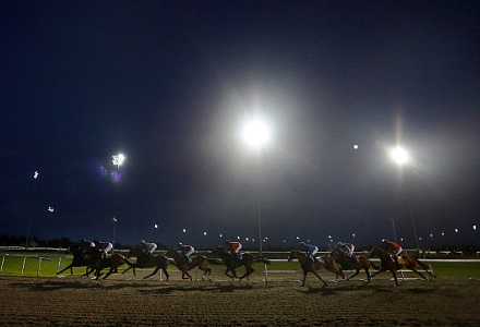 Wednesday 28th October - Best Bets