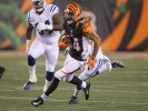 Miami Dolphins at Cincinnati Bengals Betting Preview