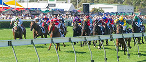 Wyong Betting Tips & Preview