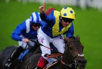 Nick Luck: Stars can shine in Voltigeur