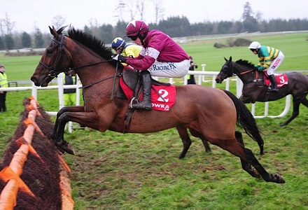 Alpha looks a knockout World Hurdle bet