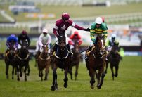 Apple's Jade given Champion Hurdle target