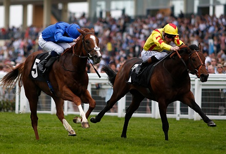 A View from the rails - Exosphere to mature at Royal Ascot
