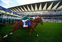 Champions Day Channel 4 Racing Preview
